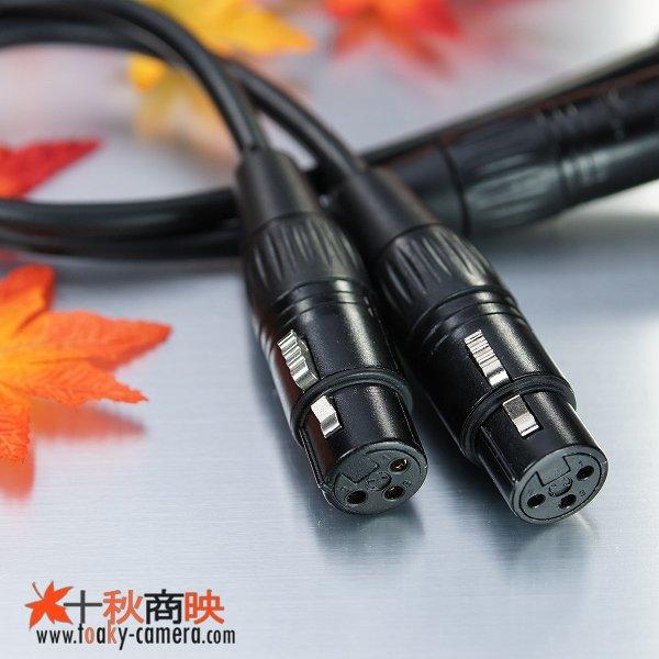 画像2: 3.5mm ステレオ ミニジャック ⇔ キャノン XLR 2本セット / キャノン用 XLR ⇔ キャノン XLR ケーブル